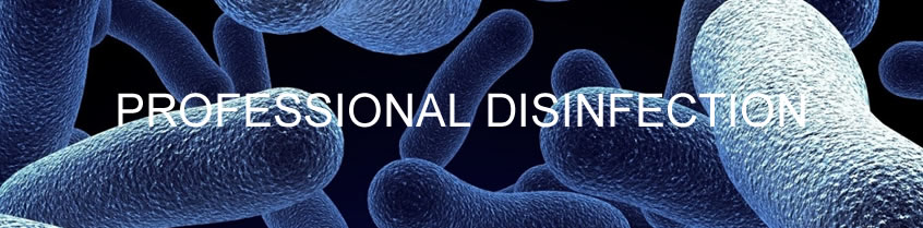 Professional Disinfection
